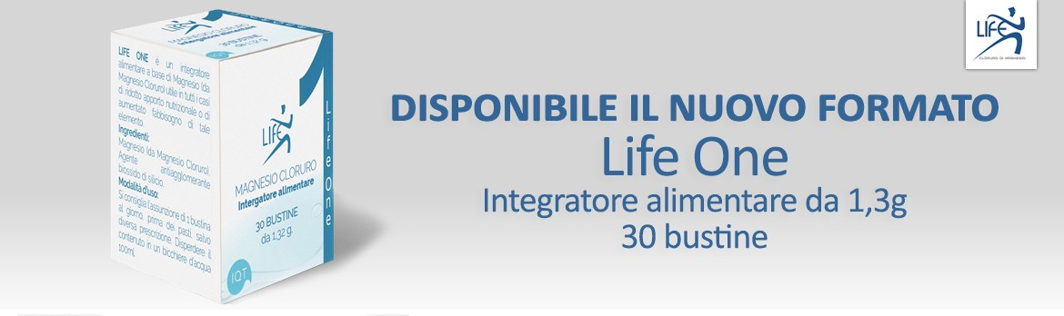 Life One Banner